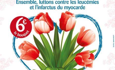 Trentième Opération Tulipes à Cœur – le retour en images
