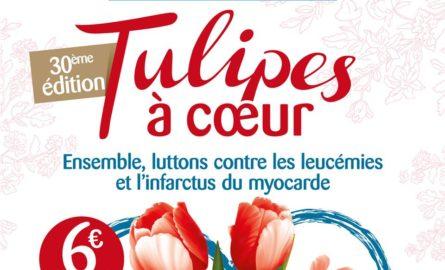 Bilan de l'opération tulipes à cœur 2019